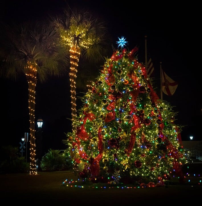 10 Popular Holiday & Christmas Events in Tampa Bay for both Friends and Family